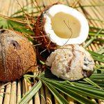 Otvorený kokosový orech na palmovom liste